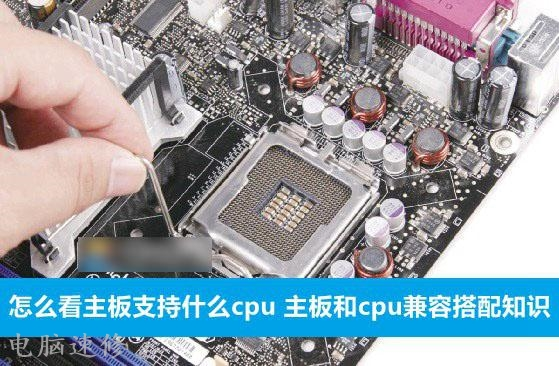 主板支持哪种类型的CPU?